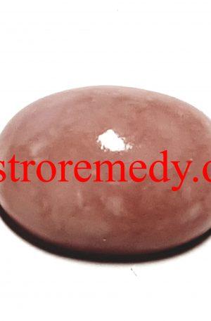 Conk Stone for Vastu